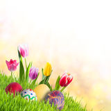 Holiday Easter Background Stock Image