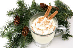 Holiday Eggnog Royalty Free Stock Photography