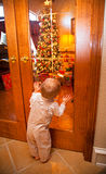 Holiday Excitement. One year old toddler Boy presses face to glass window to get a better look at the Christmas Tree and all the wrapped Christmas Presents under Stock Photography