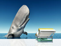 Holiday Experience with Whale Stock Photo