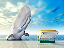 Holiday Experience with White Whale. Computer generated 3D illustration with White Whale and Deck Chair Royalty Free Stock Photo