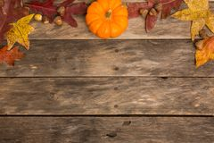 Holiday fall color background. Oak leaves acorns pumpkins corn Stock Photos