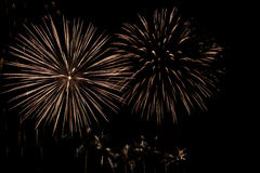 Holiday firework. Royalty Free Stock Images