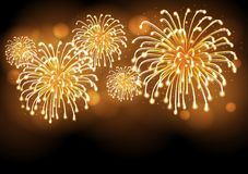Holiday firework. Independence day. Festival holiday firework. Independence day Royalty Free Stock Photo