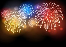 Holiday firework. Independence day. Festival holiday firework. Independence day Stock Image