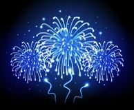 Holiday firework. Independence day. Festival holiday firework. Independence day Stock Images