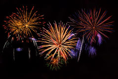 Holiday fireworks Royalty Free Stock Photography