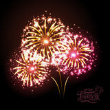 Holiday fireworks Royalty Free Stock Images