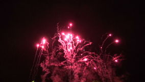 Holiday fireworks on  night background stock video