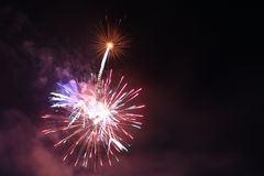 Holiday fireworks in night sky. Stock Photos