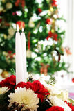 Holiday Floral Stock Images