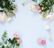 Holiday flowers background. Beautiful bouquets  of pale pink roses and ranunculus flowers and macaroons cakes. On pale blue background. Top view. Copy space Stock Photography