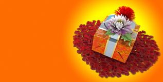 Holiday flowers with gift box stock images
