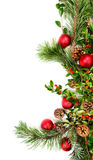 Holiday foliage border Stock Photos