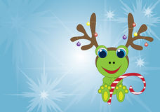 Holiday Frog Stock Photo