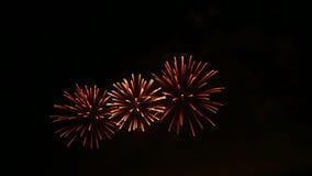 holiday Fuegos artificiales de la noche almacen de video