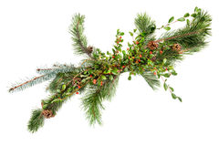 Holiday garland. With pine,  spruce, pine cones and evergreen with berries Royalty Free Stock Photo
