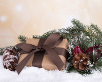 Holiday Gift Box Stock Image