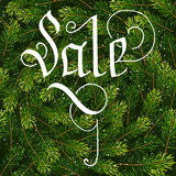 Holiday gift card with hand lettering Sale on Christmas fir tree branches background. Vector illustration for your design Royalty Free Stock Images