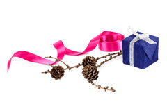 Holiday gift, pink ribbon and a branch of pine tree with cones Stock Images