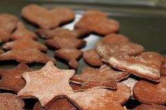 Holiday gingerbread cookie cutouts of trees and stars on the plate. stock photos