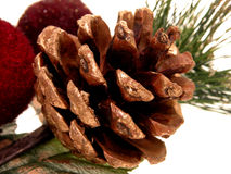 Holiday:  Gold Painted Pine Cone Stock Photo