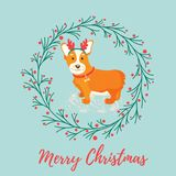 Holiday greeting card with cute corgi dog. Royalty Free Stock Photos