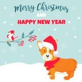 Holiday greeting card with cute corgi dog Stock Image
