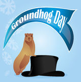 Holiday Groundhog Day Stock Images