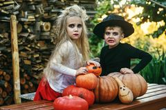 Funny kids in costumes with pumpkins stock photo
