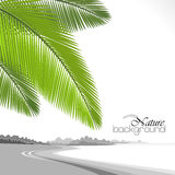 Holiday on Hawaii Beach Royalty Free Stock Images