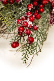Holiday Holly and Greenery Background Stock Photo