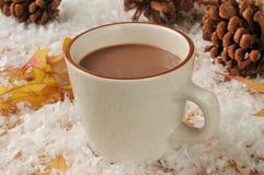 Holiday hot chocolate Stock Photos