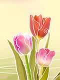 Holiday illustration of tulips. Floral abstract background. Stock Photo