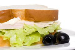 Holiday Leftovers turkey sandwich 2 royalty free stock photos