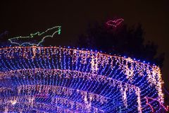 Holiday lights and flying bats stock photography