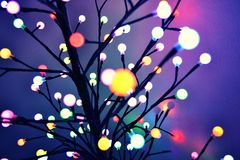 Holiday lights Royalty Free Stock Photography