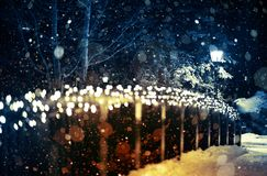 Holiday Lights Scenery. Winter Night in the Park with Seasonal Lighting Decoration and the Lantern Stock Image