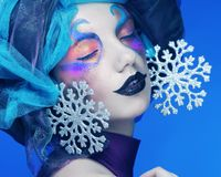 Holiday Make-up.Beautiful Woman's Face Royalty Free Stock Image