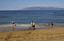 HOLIDAY MAKERS ON BEACH Stock Images