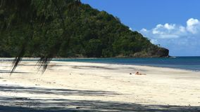 Holiday makers enjoy myall beach at cape tribulation. In tropical north queensland, australia stock video footage