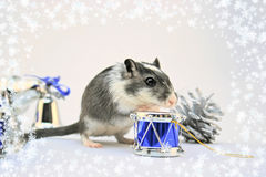 Holiday mouse Royalty Free Stock Image