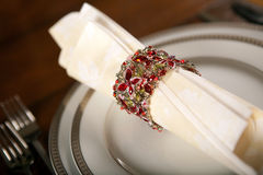 Holiday napkin ring 3 Royalty Free Stock Image