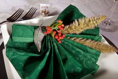 Holiday napkins Royalty Free Stock Photo