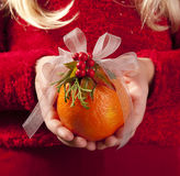 Holiday orange in red Royalty Free Stock Image