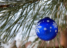 Holiday Ornament Stock Photos