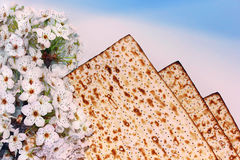 Holiday of Passover, flowers and matzo Royalty Free Stock Image