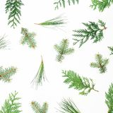Holiday pattern with winter trees on white background. Christmas or New year composition. Flat lay, top view stock photo