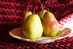 Holiday Pears 2. Holiday pears against a velvety background Royalty Free Stock Photo