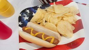Holiday Picnic With A Hot Dog Stock Photography